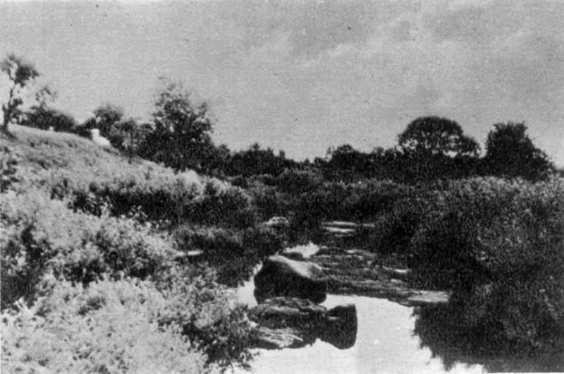 View of Gnylusha river in Zhaborycja