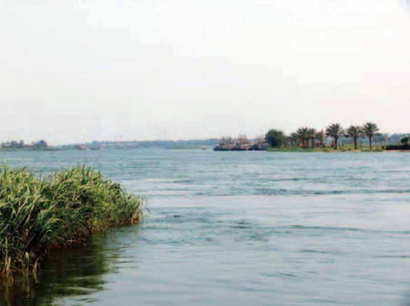 Вид Ніла в околицях Гелуана